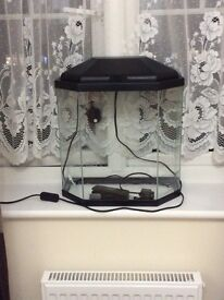 25 litre fish tank need to be gone asap