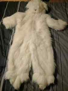 English sheep dog Costume chien Berger anglais Gatineau Ottawa / Gatineau Area image 2