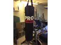 PRO POWER Punch bag and 2x set of gloves
