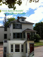 HISTORIC Large Lower Duplex 2 Bedroom Apartment for Rent Pets