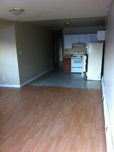 Newly Renovated Large 1-Bedroom Apartment