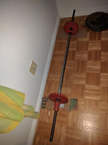 Weights and rod