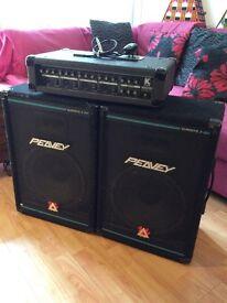 PA Kustom Amp and two Peavey eurosys 2 Speakers