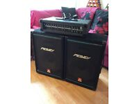 PA Kustom Amp and two Peavey eurosys 2 Speakers