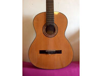Great Acoustic Classical Guitar! - Gig bag included!