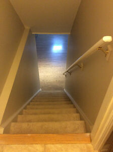 One Bedroom Basement Rental in Milton