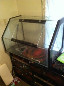 Approx 75 gallon custom terrarium