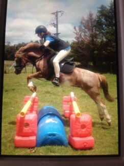 ** Horse Lessons Available ** Warragul Baw Baw Area Preview