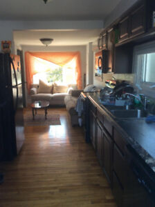 Roommate Wanted in Sunny Pleasant Street Apartment