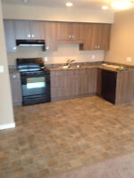 Brand new Two bedroom Condo for sale with a basement studio