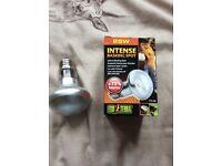 Lamp holder & heat bulb
