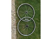 "26"" wheel set from Giant Rincon"