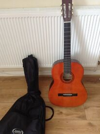 Guitar and carry case