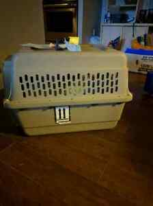 Medium small pet crate- airline approved with water dish and bed