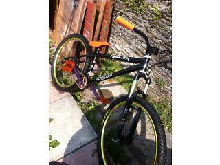 Mountain bike/stunt bike