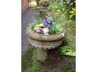 Pair garden urns