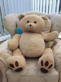 Giant Marks And Spencer teddy bear