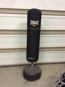 Everlast Everflex boxing bag
