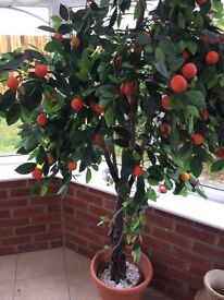 Artificial orange tree