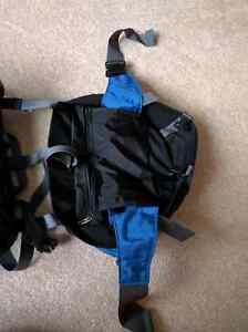 See Europe with this backpack! Kitchener / Waterloo Kitchener Area image 3