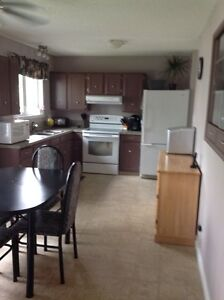 MOTIVATED - Bungalow in Viking For Sale Strathcona County Edmonton Area image 6