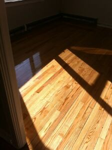 Refinish Your Hardwood Floors Today St. John's Newfoundland image 2