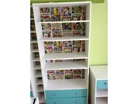 Cabin bed and shelving for a boy's bedroom