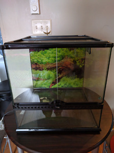 Terrarium and everything you need $100 obo