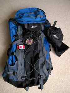 See Europe with this backpack! Kitchener / Waterloo Kitchener Area image 2