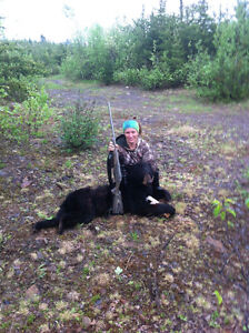 Fully Licensed, Professionally Guided Bear Hunt