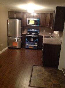 2 Bedroom Apartment Available November 1st