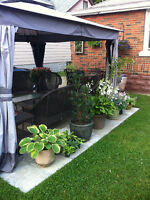 12 X 12 GAZEBO. INCLUDES SCREENING AND STORM FLAPS FOR ALL SIDES