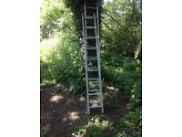 x2 seperate ladders