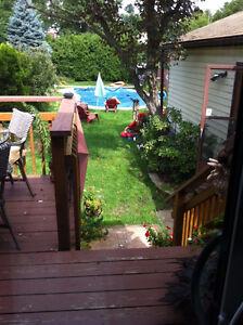 Main flr bdrm spacious home avail Dec 21st; homestay avail... London Ontario image 2