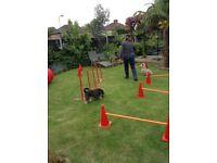 Dog agility items