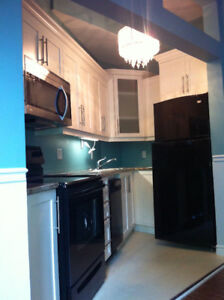 Location location. 2 level 1br apt.  Very large master suite