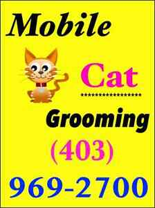 $50    Mobile Cat Groomer. GENTLE & Knowledgable. ***$50