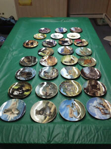 Beautiful Collectable Plates!