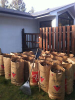 YARD CLEANUP AND PROPERTY MAINTENANCE