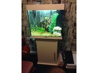 Fish tank 200 litres