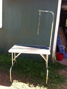 Grooming table for sale. 100 firm