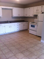 Renovated Large 2Br- Heat & Hot water included- NEAR NBCC