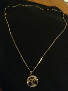 Men's 30 inch silver chain with Tree of Life pendant!