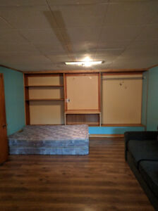 Downtown castlegar room and basement bachelor suite for rent.