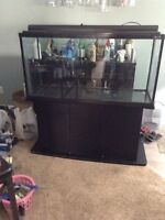 80 gallon fish tank with stand