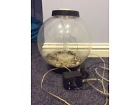Bio-orb fish tank