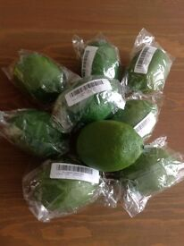 8 artificial limes, brand new