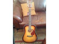 Brunswick 12 String Accoustic Guitar