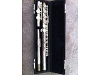 Dawsons own brand flute and hard case