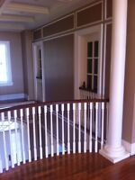 Special ***** professional custom quality painting